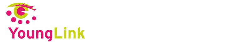 YoungLink verbindt Noorderlink op de Noorderlinkdagen 2016